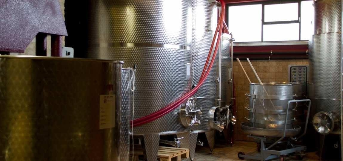 Crushing and Pressing wine making